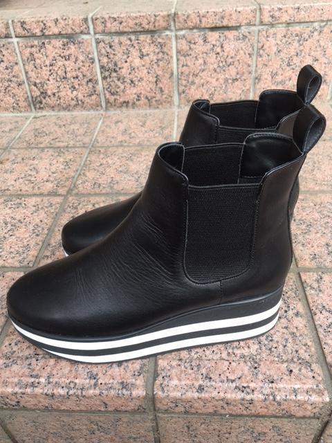 日記ブーツ.JPG