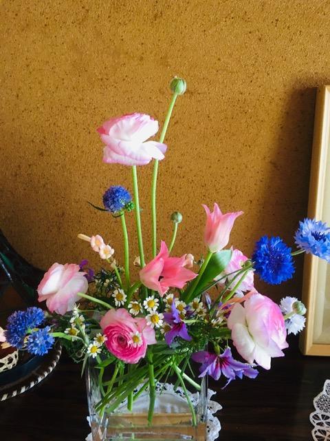 春の花 ビビット.jpg