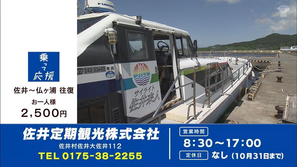 佐井定期観光株式会社