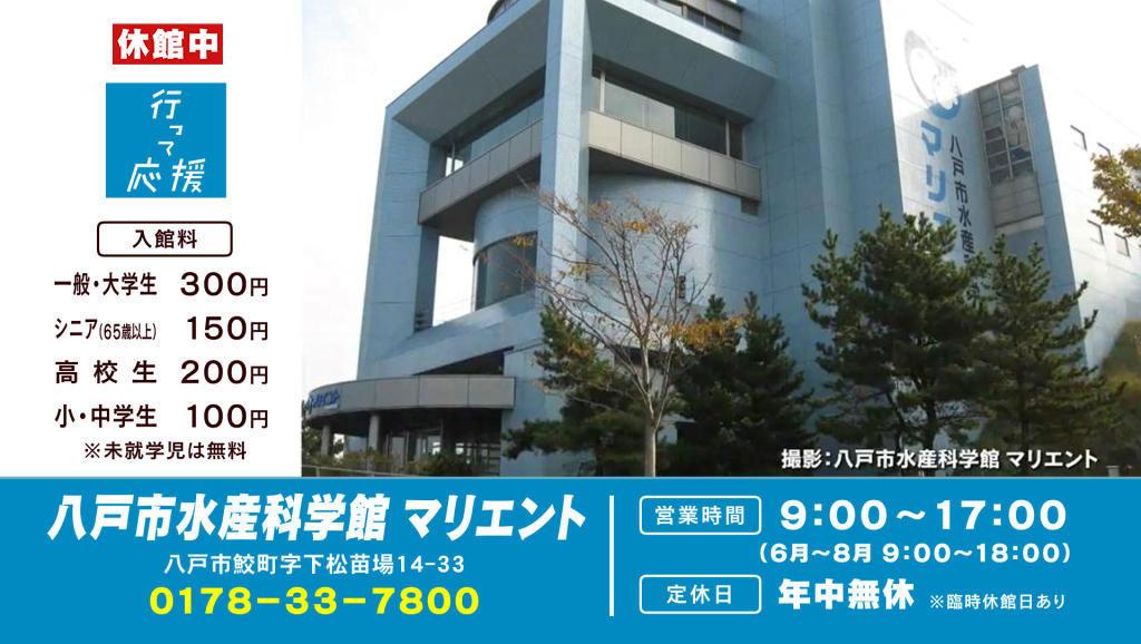 八戸市水産科学館 マリエント